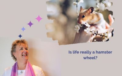 Is life really a hamster wheel?
